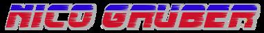 Nico Gruber - Rennfahrer - Britische FF1600 - Austria | Es ist schwer, aber nicht unmöglich in die Formel 1 zu kommen. Ich möchte Sie von meinem Weg überzeugen, Ihnen zeigen, dass ich es ernst meine und realistische Ziele verfolge.